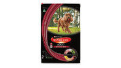 Adult Dry Dog Food 12kg