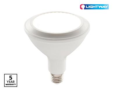 Par 38 LED Globe
