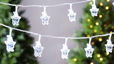 100 LED Low Voltage Novelty Lights