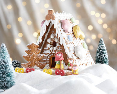 10 gingerbread house kits because baking it yourself is overrated diy gingerbread house kit 500g solutioingenieria Choice Image