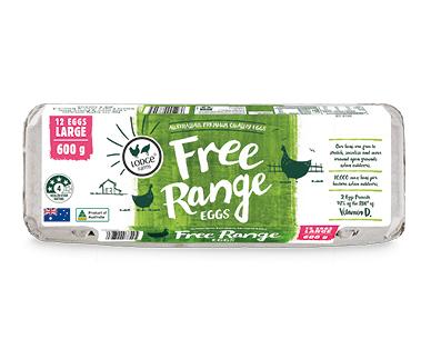 Lodge Farms Free Range Eggs 600g